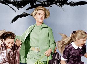 Tippi-Hedren-The-Birds-1963